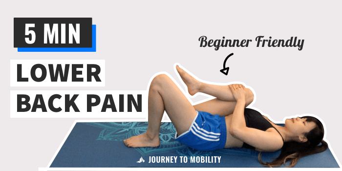lower back stretching video youtube